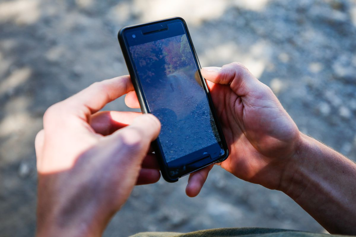 Kyle Burgess looks on Monday, Oct. 12, 2020, at cellphone video he took of his encounter with a mountain lion while on a run in Slate Canyon near Provo. Burgess posted the video on Instagram where it received thousands of likes.