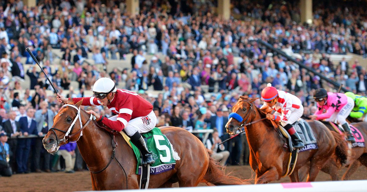 Breeders' Cup 2018 live stream: Start time, TV schedule, how to watch online, and results