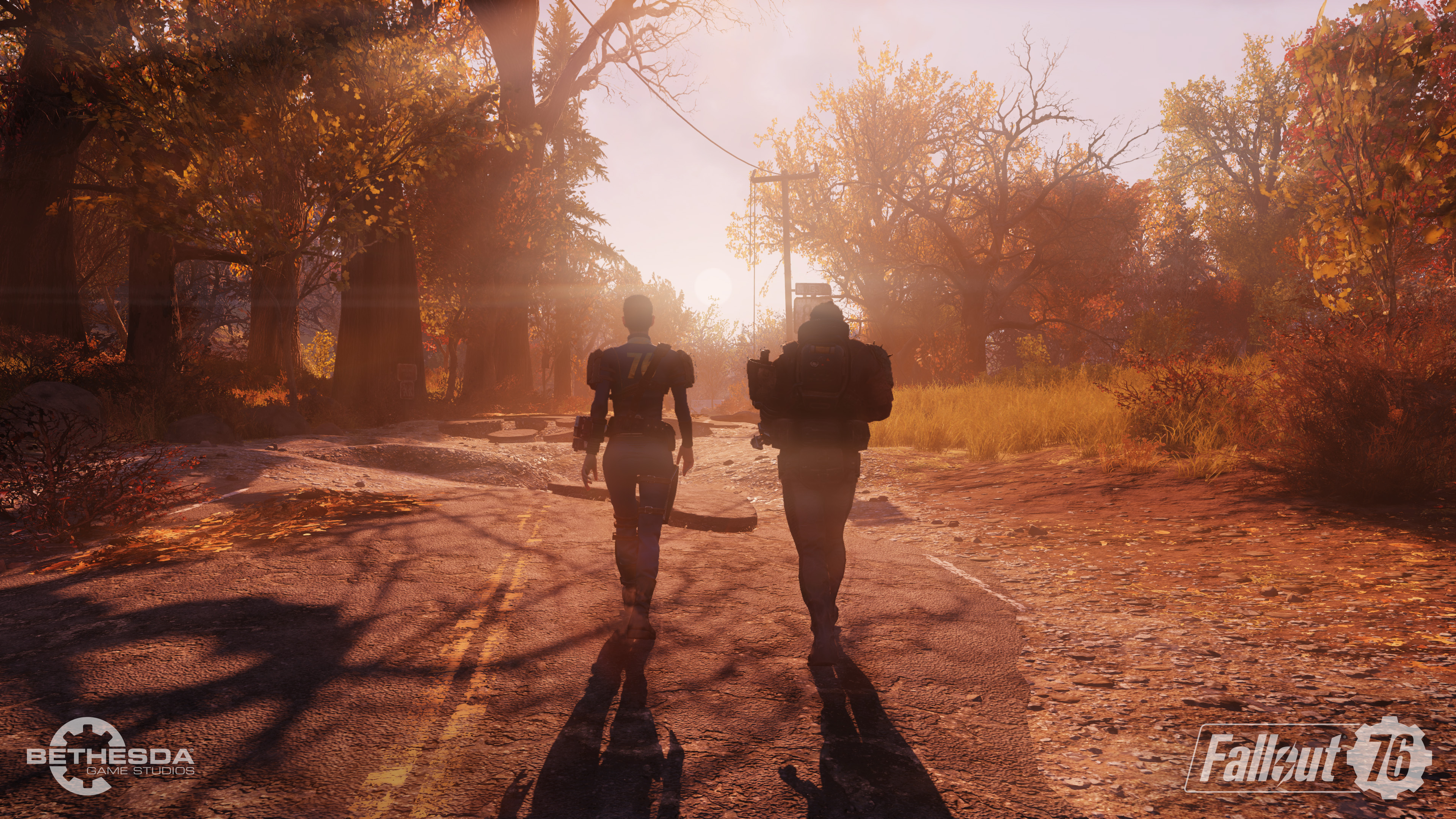 Fallout 76 beta - two wanderers