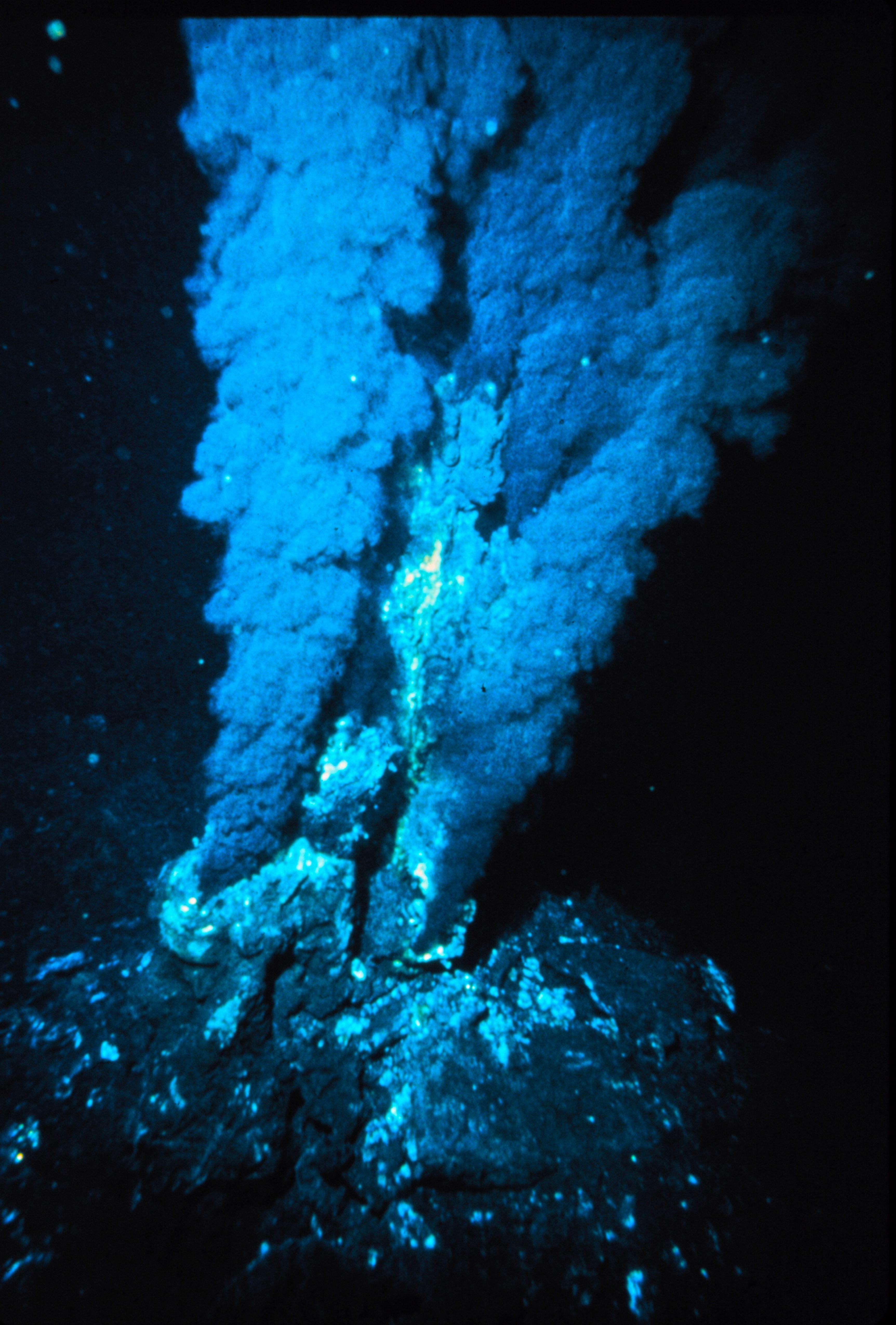 Black smoker at a mid-ocean ridge hydrothermal vent.