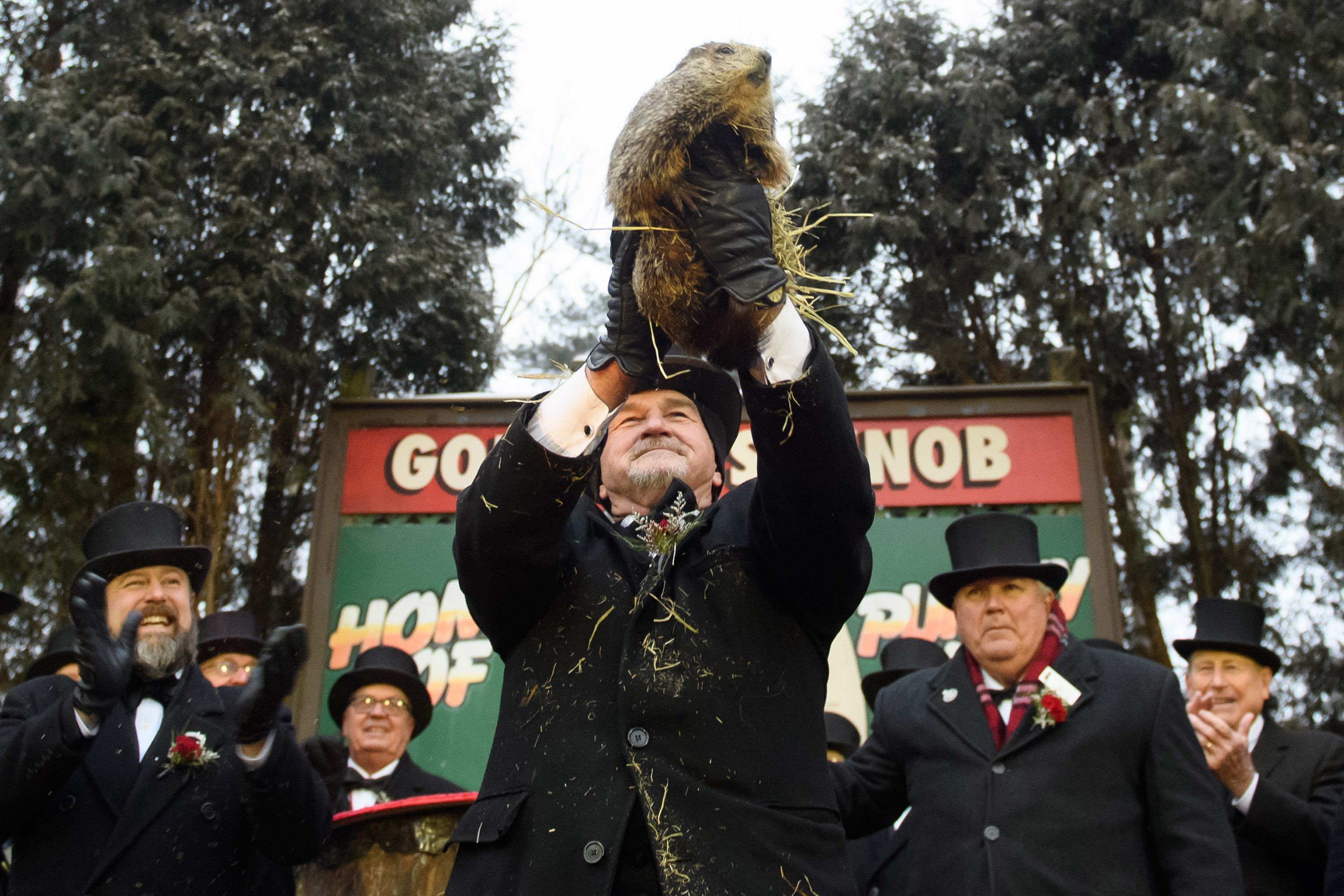 """""""Punxsutawney Phil"""" Looks For His Shadow At Annual Groundhog Day Ritual In PA"""