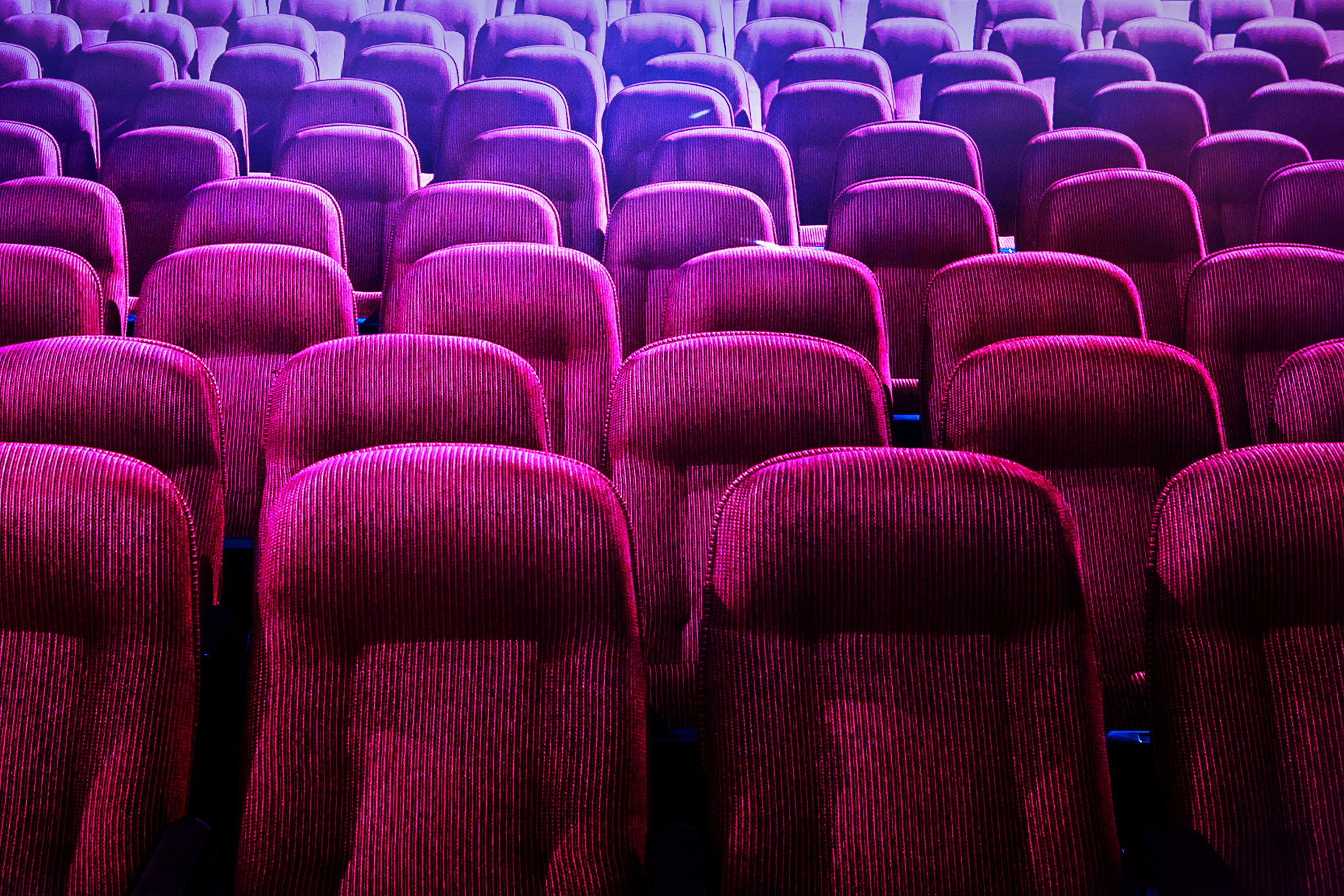 Rows of seats in a movie theater