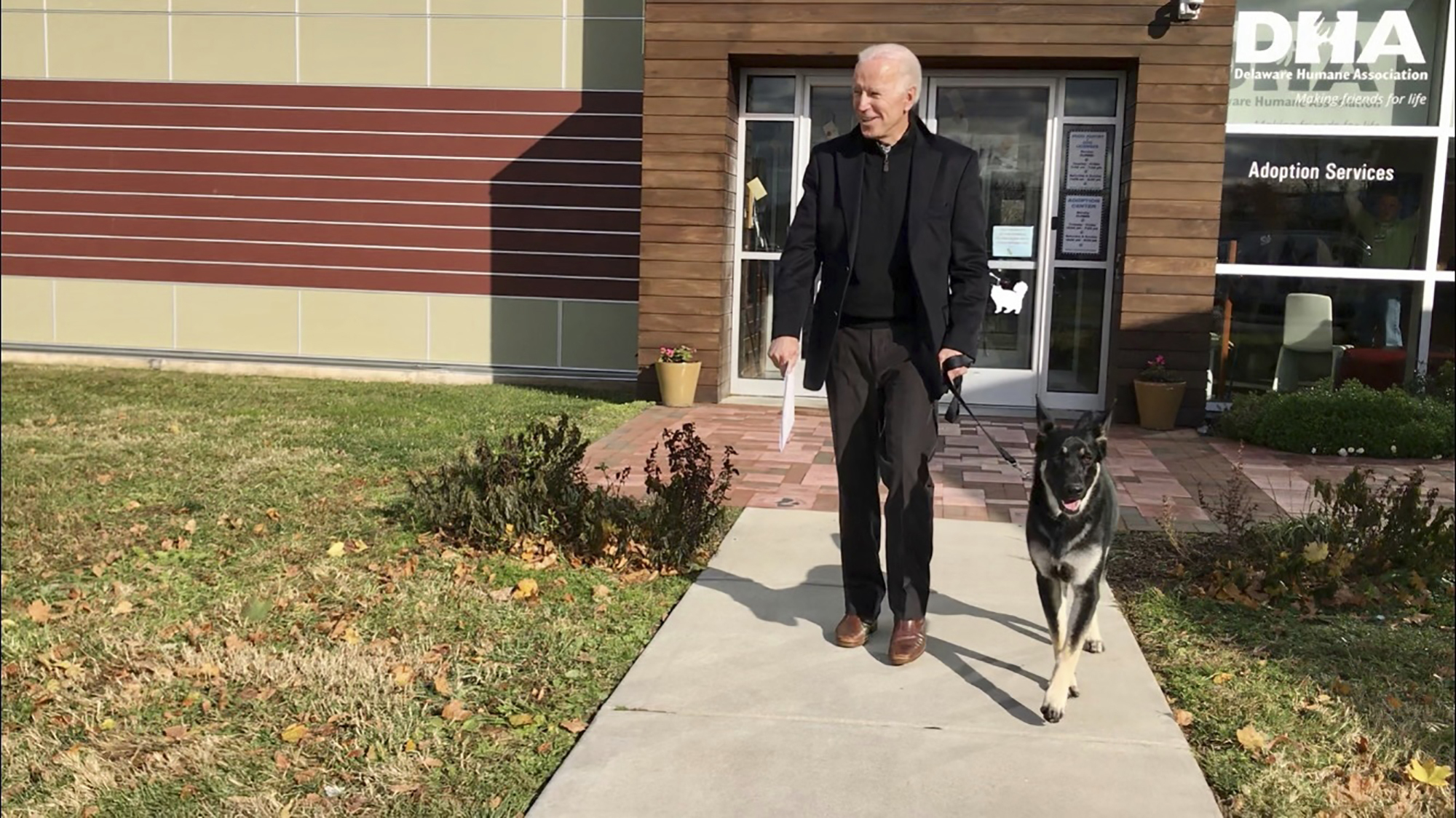 This Nov. 16, 2018, photo, file provided by the Delaware Humane Association shows Joe Biden 和 his newly-adopted German shepherd Major, in Wilmington, Del.