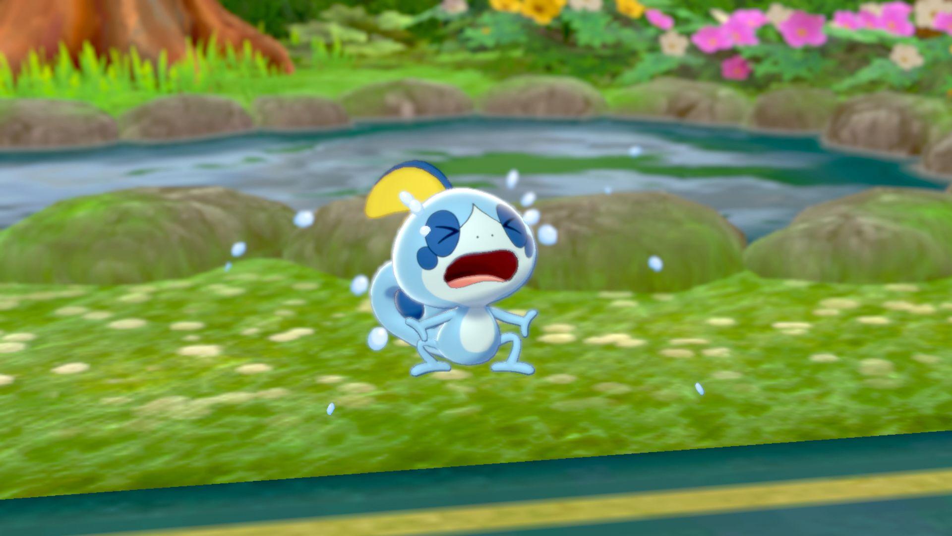 PokémonSword and PokémonShield - Sobble sobbing