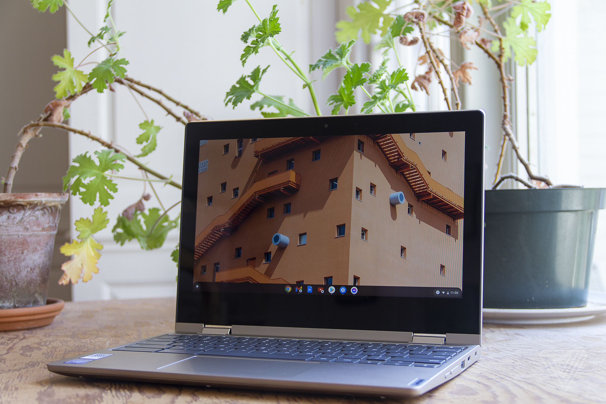 The Lenovo Ideapad Flex 3 Chromebook sits open on a table in front of a window and two houseplants. The screen displays the upper windows of a large building.