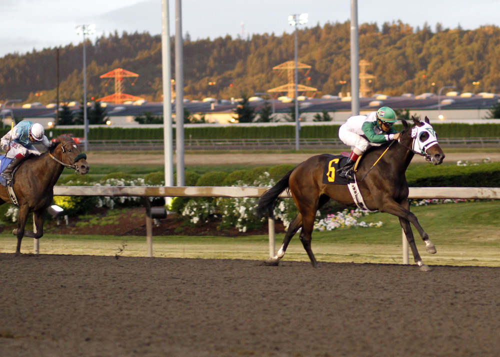 Erin Palmer/Emerald Downs Photo: Ducoti and leading rider Leslie Mawing were the winning team Thursday in the Pete Von Reichbauer Purse for older fillies and mares at Emerald Downs. July 14, 2011