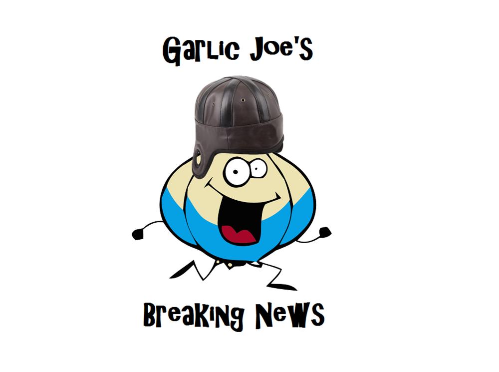 garlic joe new