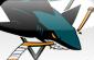 San jose sharks.va9904b9564adaaa5581a432cc663f48cd2853348