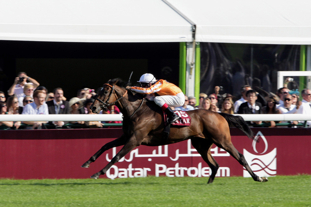 PARIS, FRANCE - OCTOBER 02:  Andrasch Starke riding Danedream wins the Qatar Prix De l'Arc De Triomphe at Longchamp racecourse on October 2, 2011 in Paris, France.  (Photo by Yves Forestier/Getty Images)