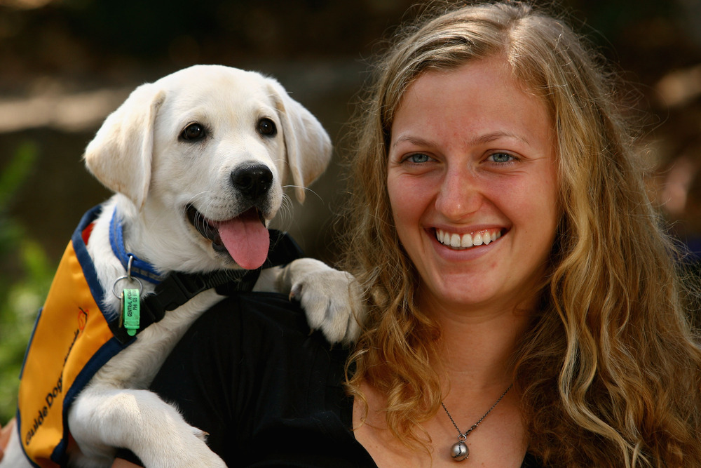 MELBOURNE, AUSTRALIA - JANUARY 18:  Petra Kvitova of the Czech Republic poses with guide dogs during day three of the 2012 Australian Open at Melbourne Park on January 18, 2012 in Melbourne, Australia.  (Photo by Robert Prezioso/Getty Images)