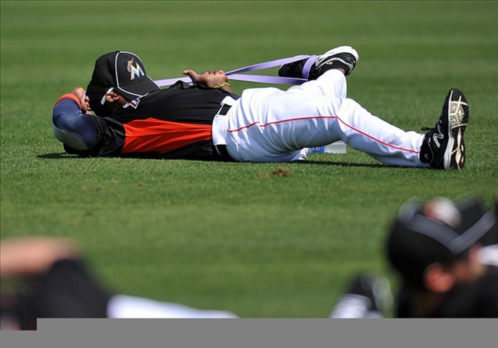 Hanley learns the nap and stretch.