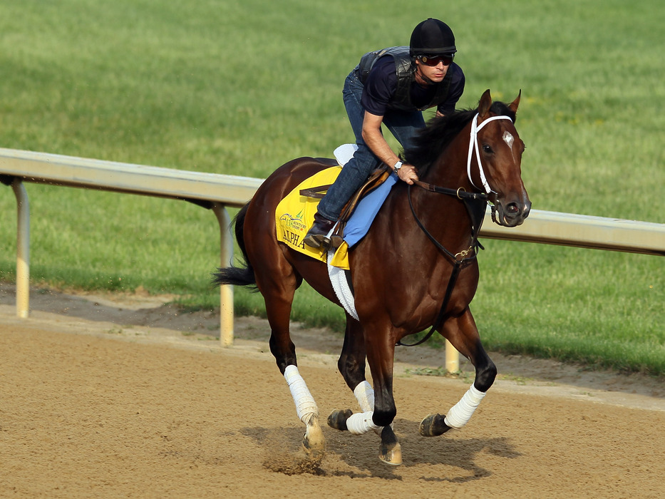 Alpha is out of the Belmont Stakes.