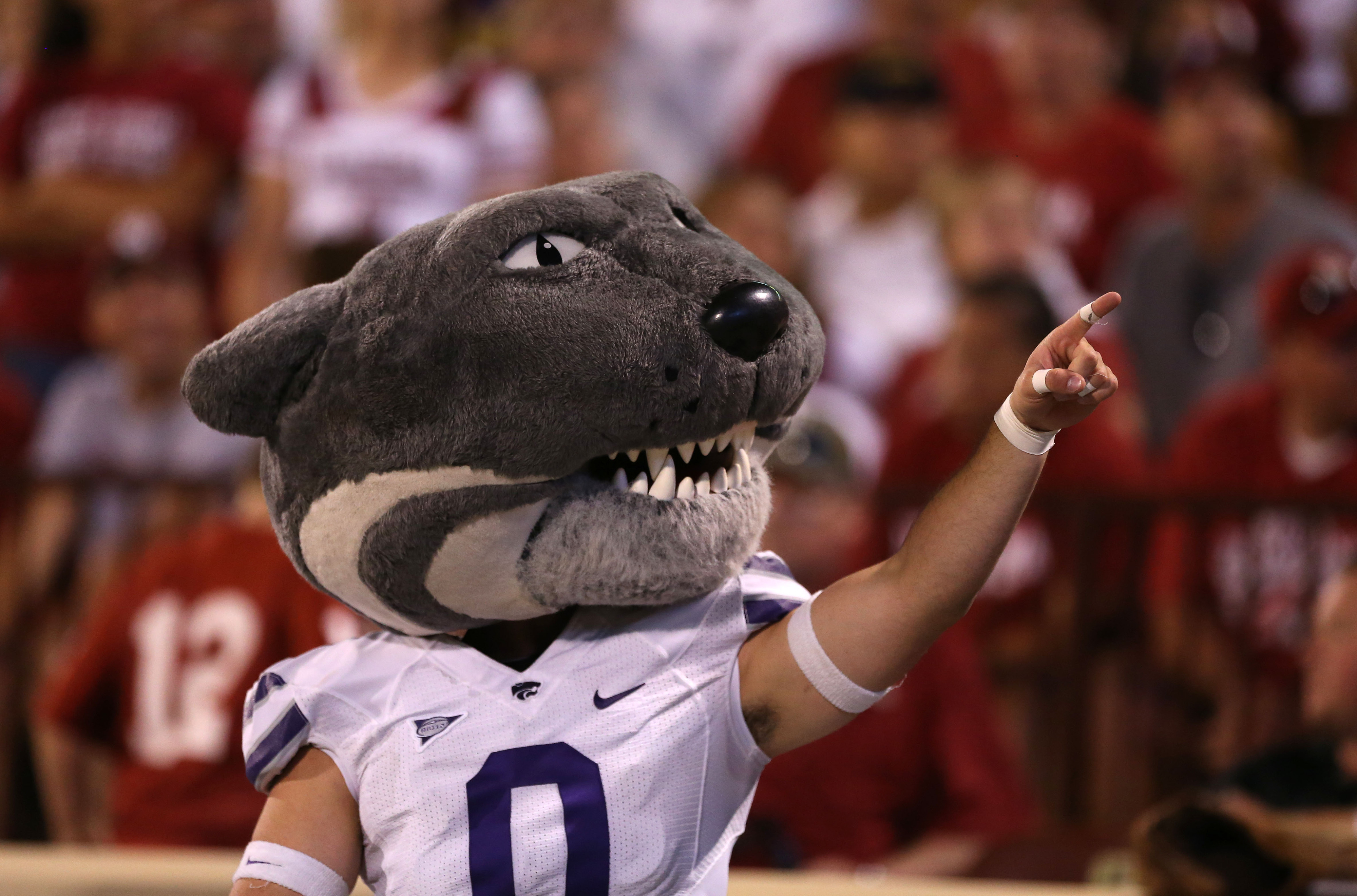 Sep 22, 2012; Norman, OK, USA; Kansas State Wildcats mascot celebrates a touchdown with fans against the Oklahoma Sooners at Oklahoma Memorial Stadium. Mandatory Credit: Matthew Emmons-US PRESSWIRE