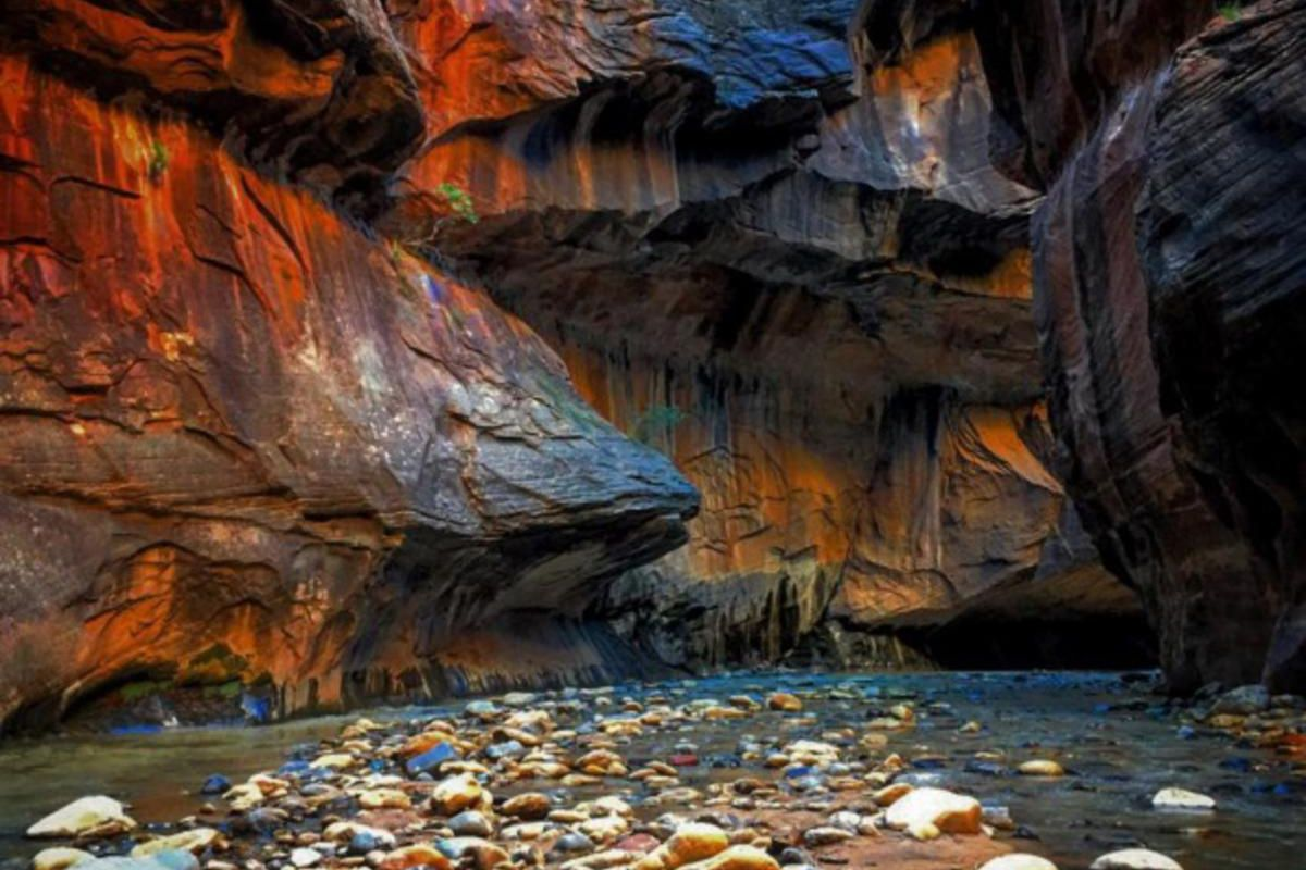 Pictured: The Subway at Zion National Park