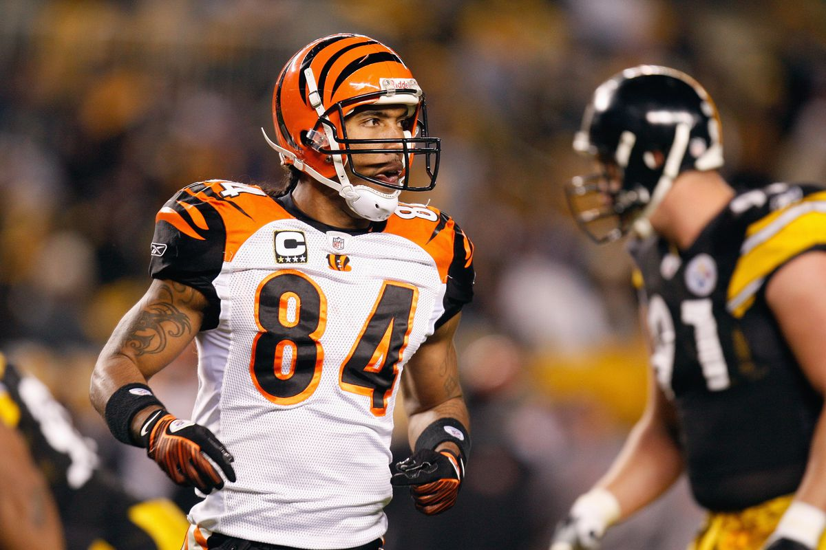 cincinnati bengals cheap