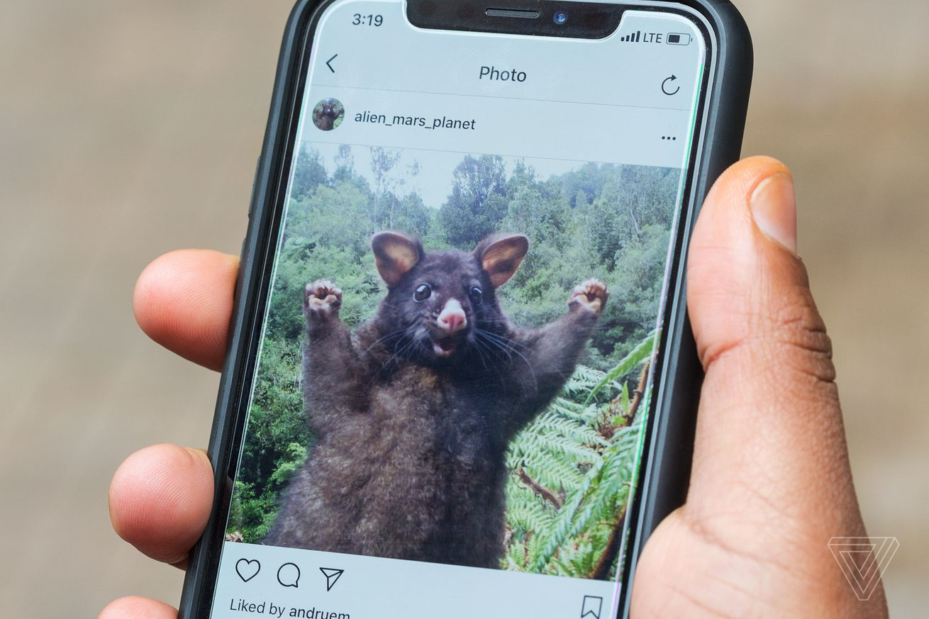 instagram adds new data download tool to export pictures and user information