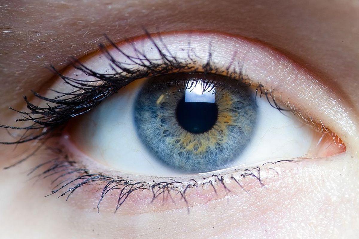 Image result for Advances in Retina Care