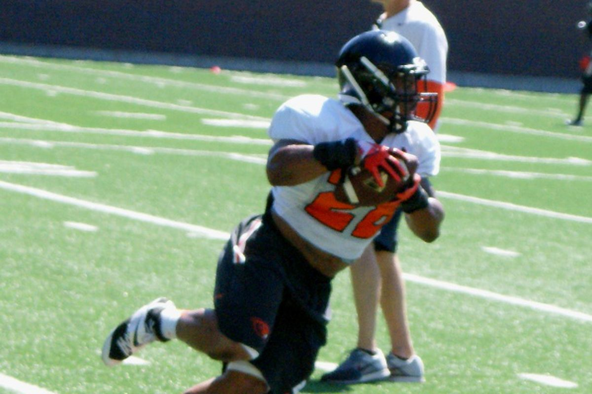 Terron Ward will fight with Storm Woods for carries this season.