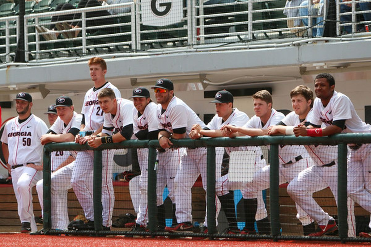 Members of the Georgia baseball team look on from the dugout as it faced the Kentucky Wildcats