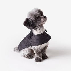 "<strong>Barbour</strong> Quilted Dog Coat, <a href=""http://www.stevenalan.com/F14_NA_F14_UAC0006BK91.html?dwvar_F14__NA__F14__UAC0006BK91_color=001"">$55</a> at Steven Alan"