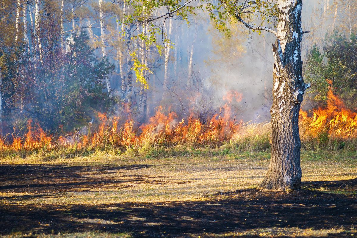 Fire officials have evacuated the Yellow Hill subdivision in Maeser and closed state Route 121 as winds fan flames in a 300-acre fire.