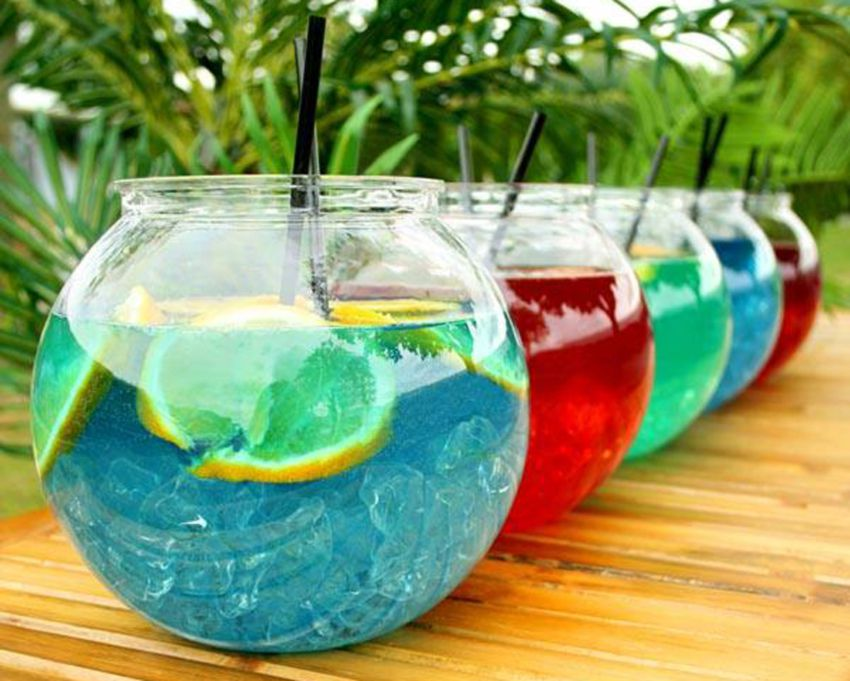 Papaya King Tropical Fishbowls