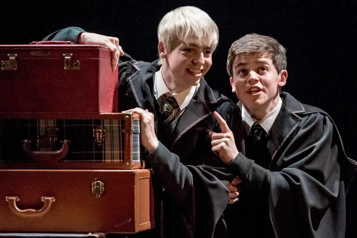 The Harry Potter universe still can't translate its gay
