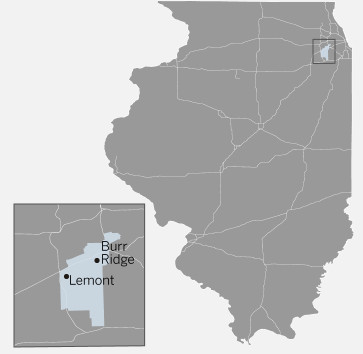 Illinois House 82nd District map
