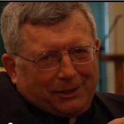 """Rev. Patrick Dowling revealed himself as the mysterious """"angel priest"""" who prayed with 19-year-old Katie Lentz, after reading a National Catholic Register article about the Missouri accident that occurred last week."""