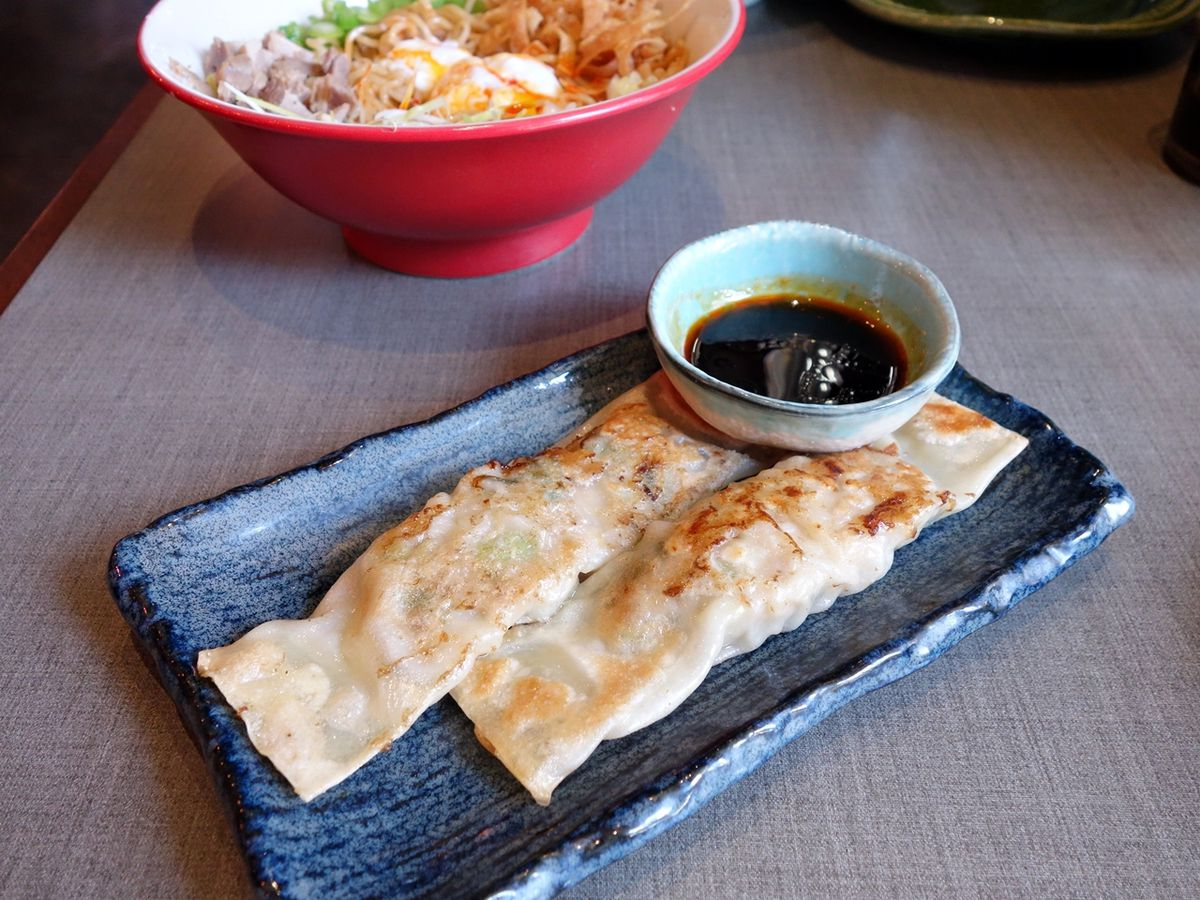 Two long and crispy gyoza on a plate at Teinei.