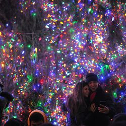 A twinkling backdrop at  the Christmas tree in Millennium Park. | Victor Hilitski/For the Sun-Times