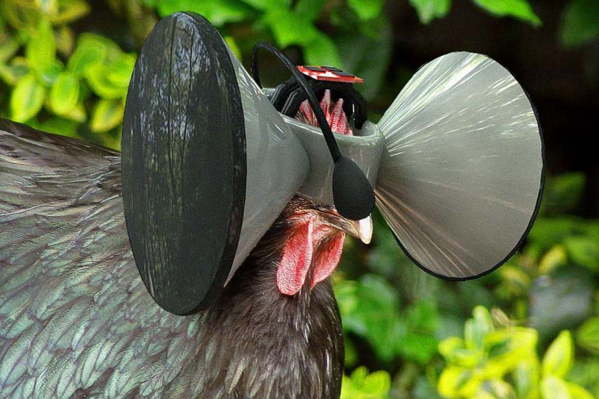 An illustration of what Second Livestock's virtual reality apparatus could look like.