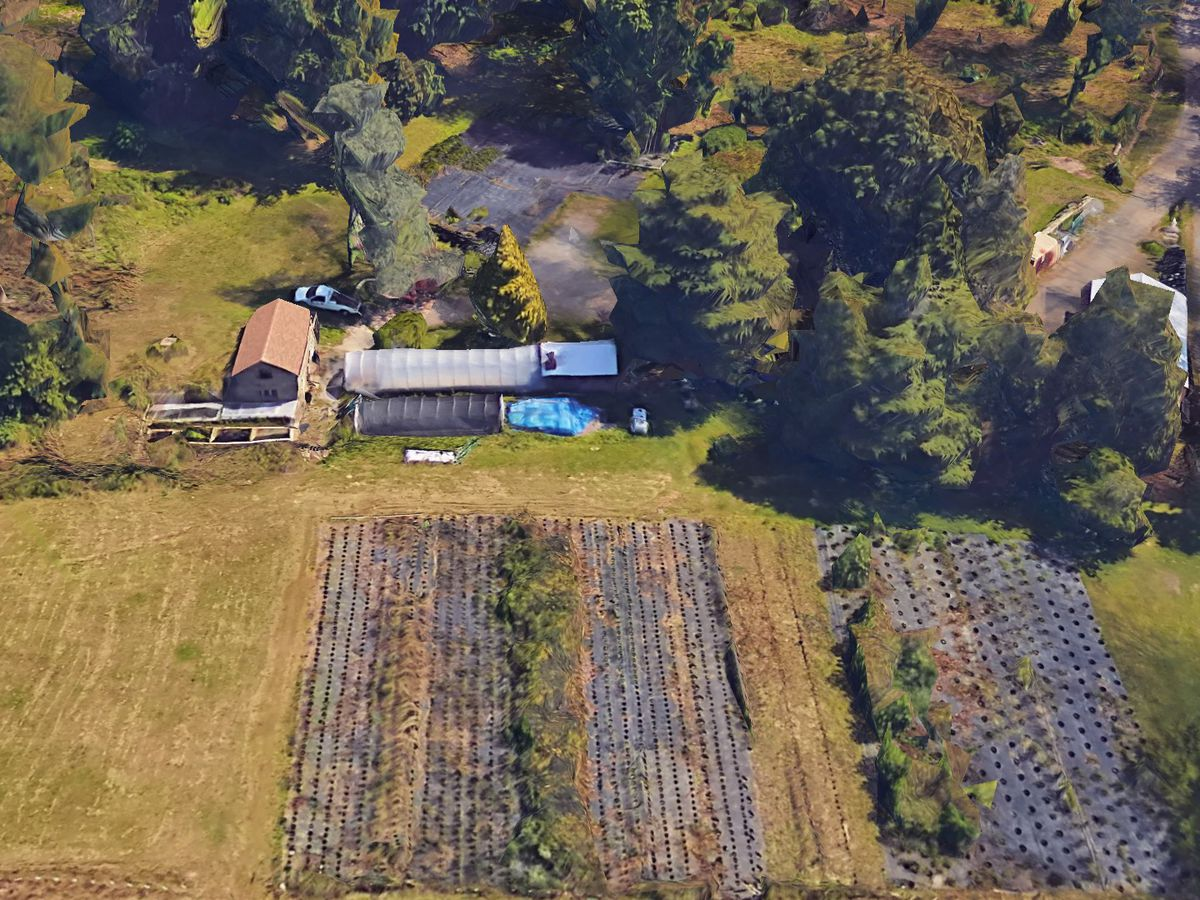An aerial view of farmland and farm buildings. The farm buildings are surrounded by trees.