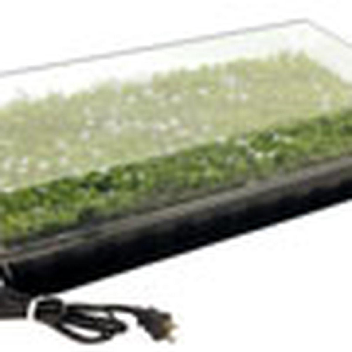 electric heat tray