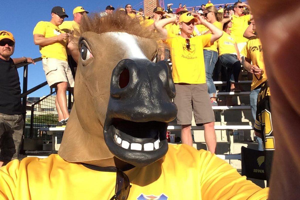 I'M A HORSE