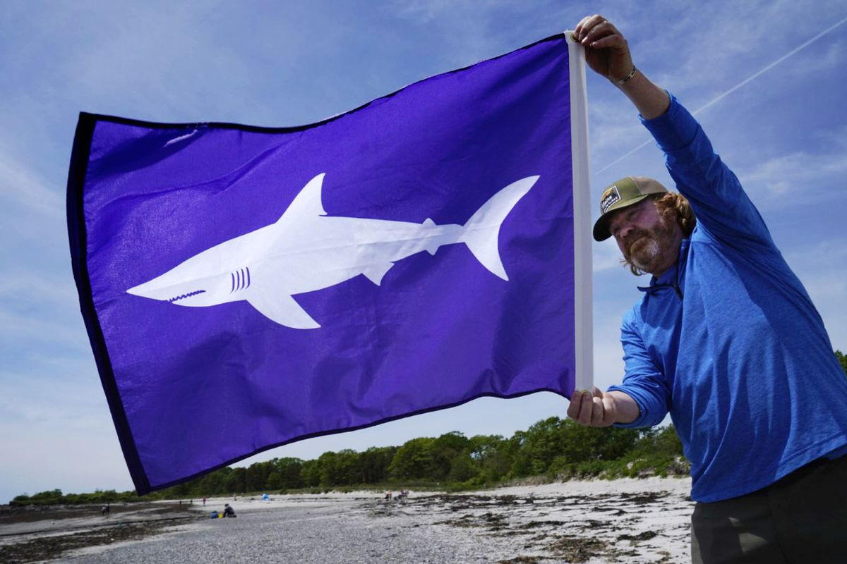Jim Britt, communications director with the Maine Dept. of Agriculture, Conservation and Forestry, holds a shark flag in Maine.