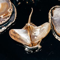 """Silver Stingray Salt and Pepper Shakers, <a href=""""http://jungleeny.com/stingray-with-mother-of-pearl-shell.html"""">$150</a>"""