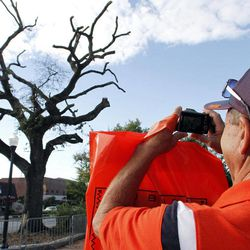 William Mayhall of Culman, Ala. takes a photo of the Live Oaks before the game on Saturday, Sept. 15, 2012, in Auburn, Ala.  Harvey Updyke, 63, is charged with spiking the majestic oaks with a potent herbicide during Auburn's national championship run in the 2010 football season, which included a 28-27 win over Alabama. The trees are a powerful symbol because Auburn football fans traditionally roll them with toilet paper after a victory. Updyke has pleaded not guilty by reason of mental disease or defect to charges that include criminal mischief and desecrating a venerable object.