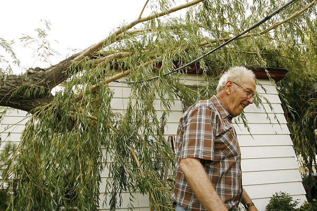Dirk Bahlmann looks at the damage that was caused when a large part of his willow tree fell on his Salt Lake home.