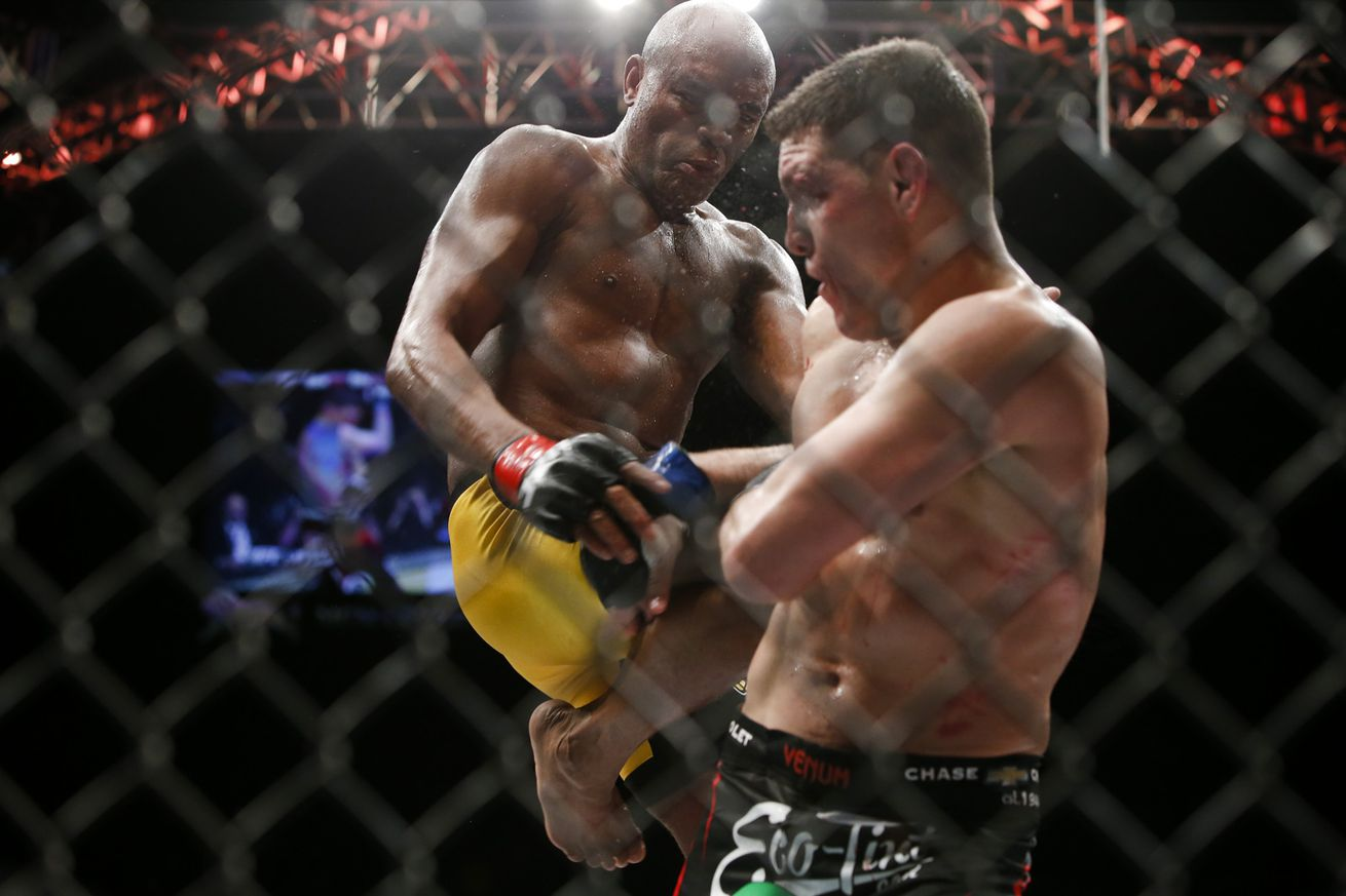 Anderson Silva calls for rematch with Nick Diaz