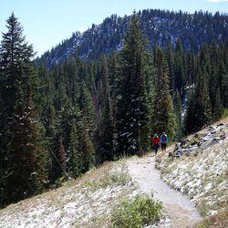 Ludivine Rassat and Bettina Huber hike on the Blood Lake Trail near Guardsman Pass on Wednesday, Sept. 20, 2017.