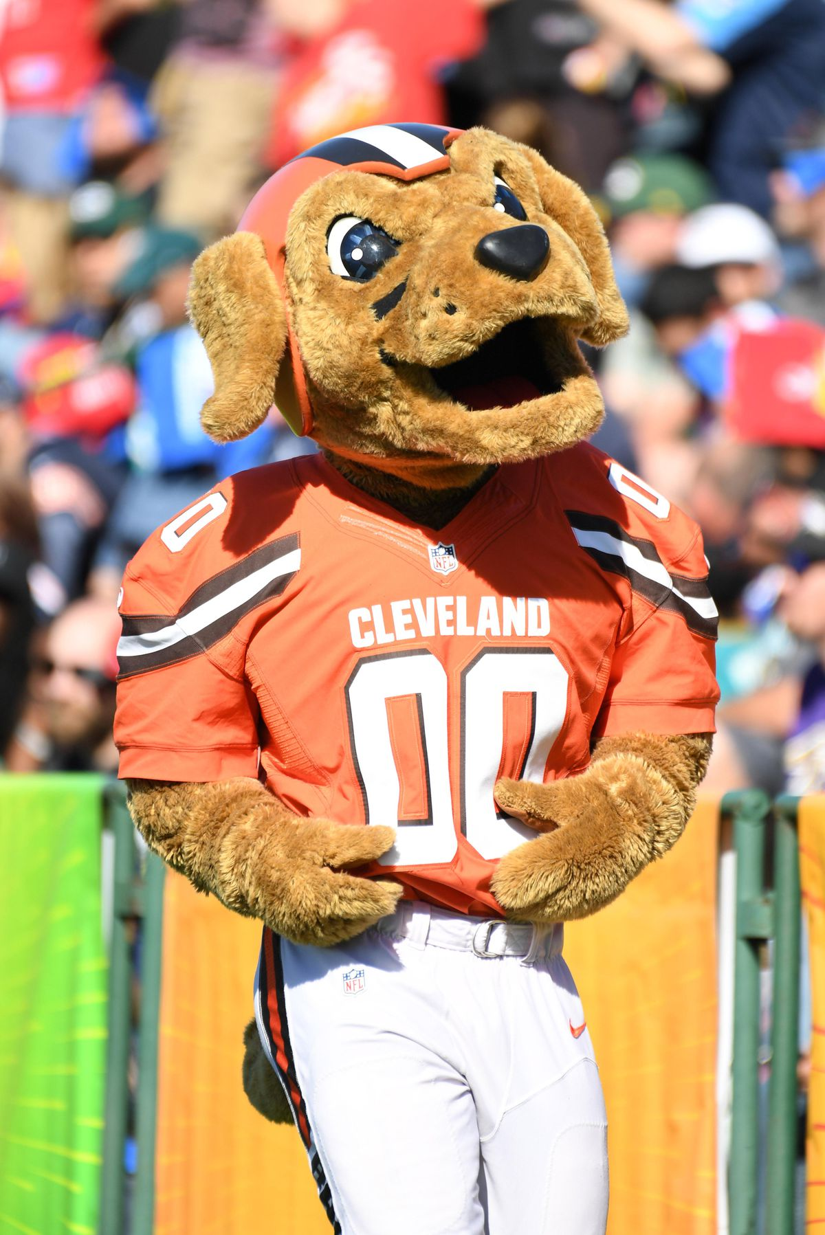 a700b103c 9 NFL mascots that fans should be worried about