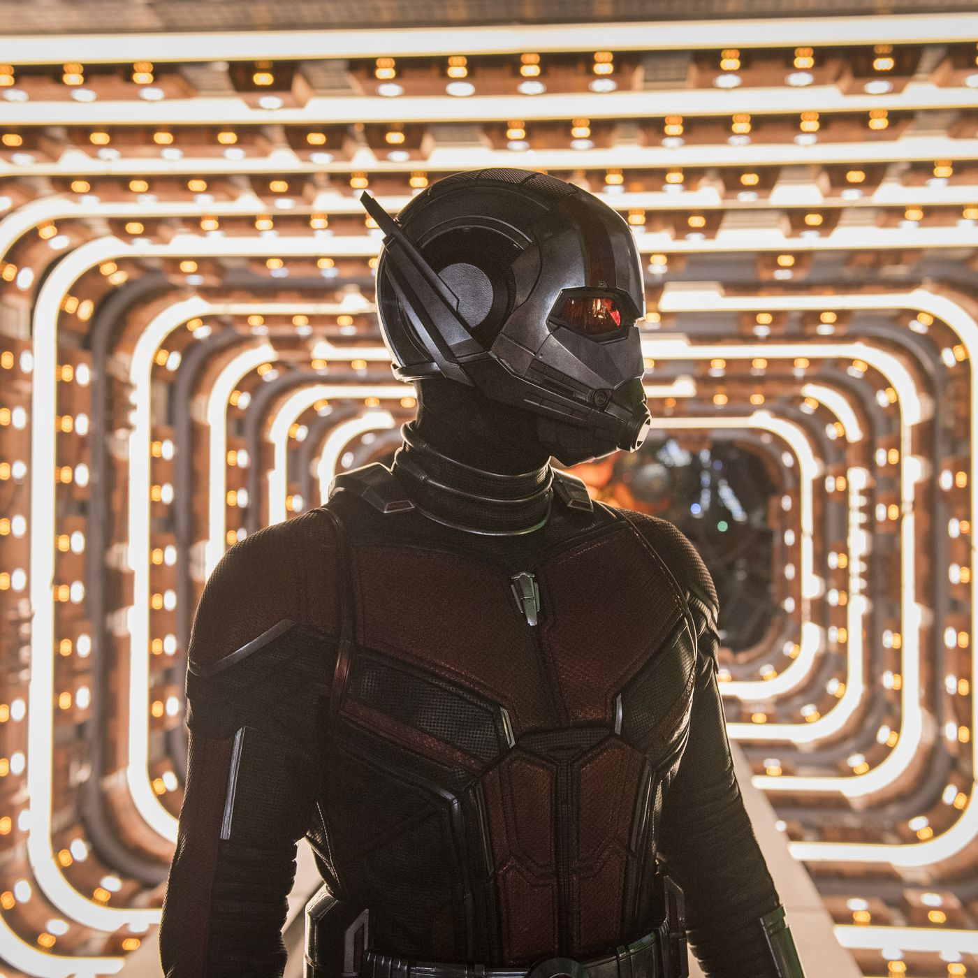 Ant Man And The Wasp Is A Solid Improvement On Ant Man The Verge