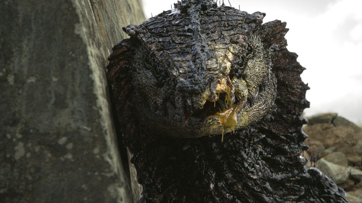 crocodile rock torrent