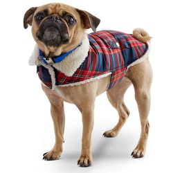 """<strong>Petco</strong> Wag-a-tude Red & Navy Plaid Dog Jacket, <a href=""""http://www.petco.com/product/125474/Petco-Wag-a-tude-Red-And-Navy-Plaid-Dog-Jacket.aspx"""">$20</a> at Petco"""
