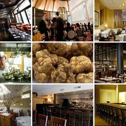 """<a href=""""http://ny.eater.com/archives/2012/10/where_to_eat_white_truffles_in_nyc_right_now.php"""">Where to Eat White Truffles in NYC Right Now</a>"""