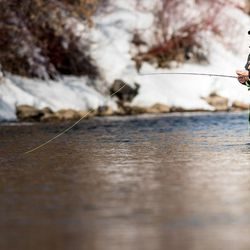 Utah Division of Wildlife Resources Director Greg Sheehan fly fishing on the Provo River in Utah.