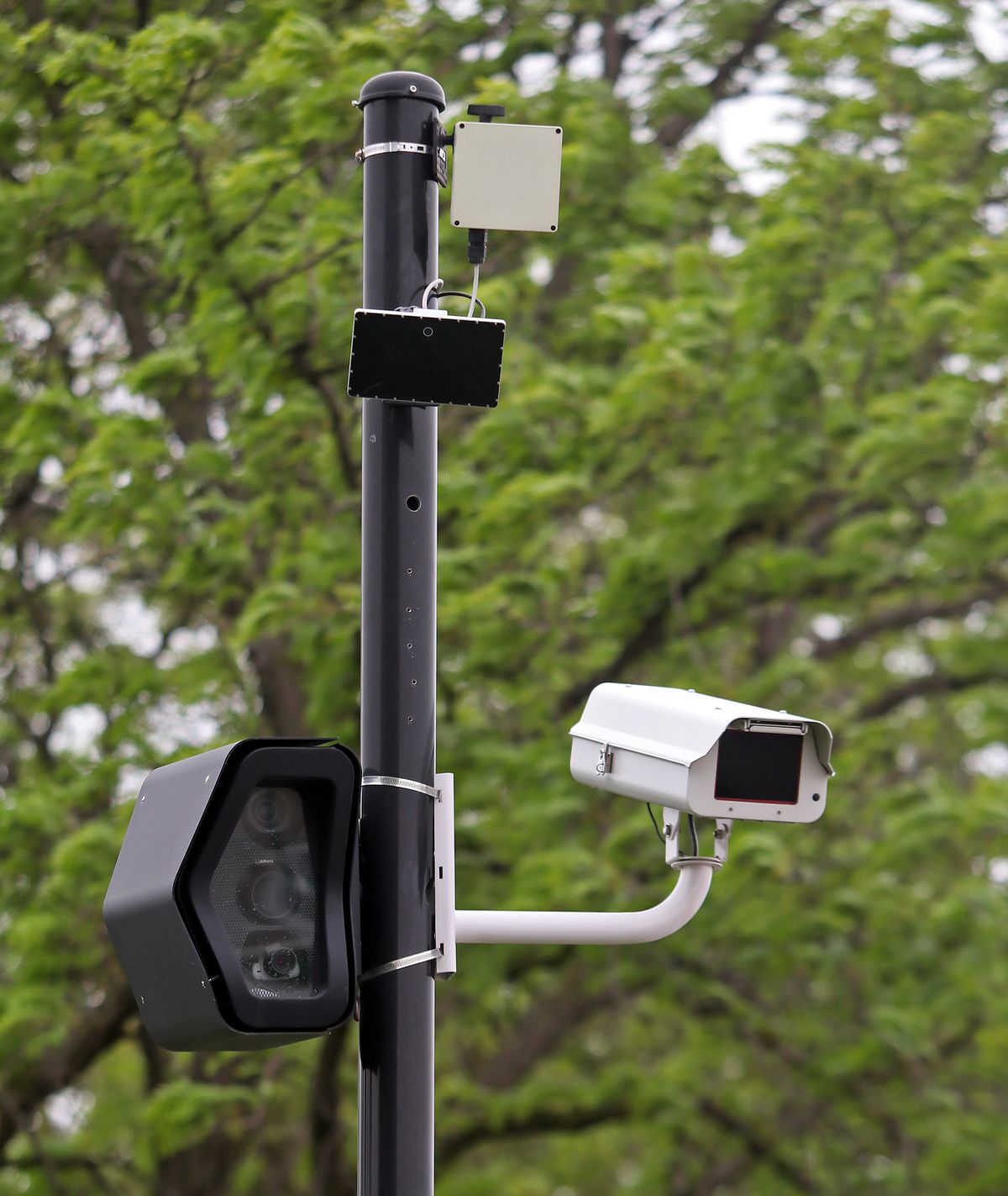A set of red-light cameras at the intersection of Mannheim and Roosevelt Roads in Hillside. | Tim Boyle/For Sun-Times Media