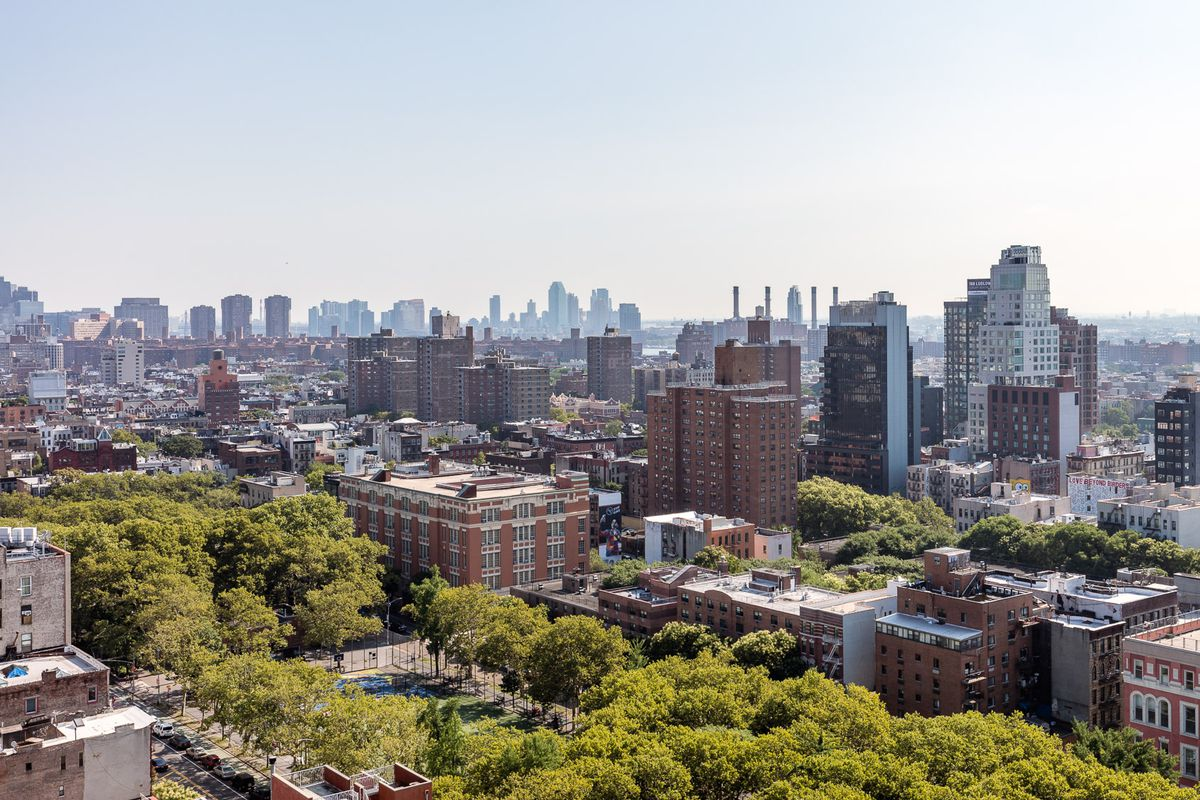 An aerial view of trees and buildings in New York City for an article discussing the eviction moratorium.