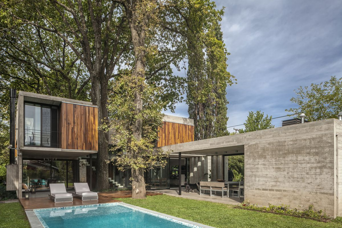 Modern Concrete And Wood House Was Designed Around Existing Trees Curbed